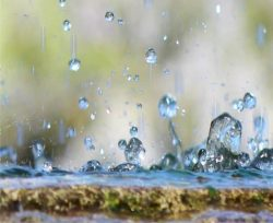 acqua che stagna